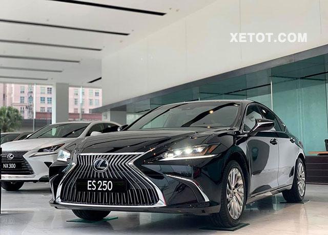 2 3 - Đánh giá xe Lexus ES 250 2021, Đối thủ đáng gờm của Mercedes E-Class